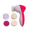 5 in 1 Face Massager-01